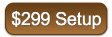 299 setup mobile websites