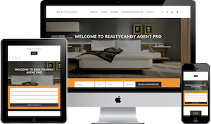 Winning Agent WordPress real estate theme